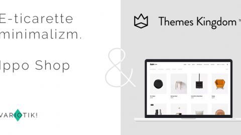 E-ticarette minimalizm. Ippo Shop